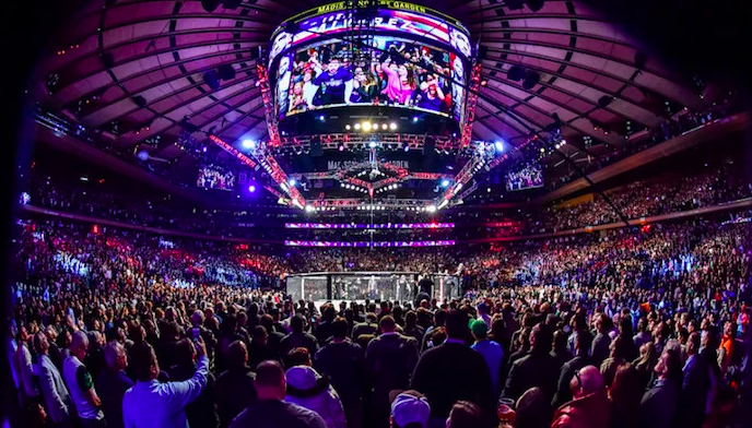 UFC Betting Guide